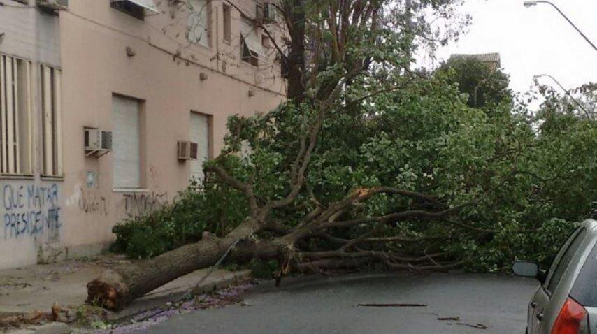 <p>Violento tornado en Catamarca causó la muerte de un adolescente y graves destrozos</p><p></p>