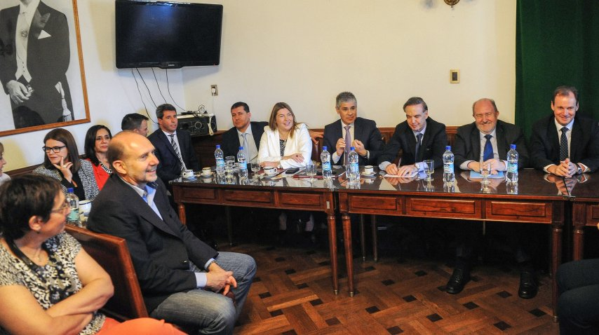 Reunión de Senadores y Miguel Pichetto