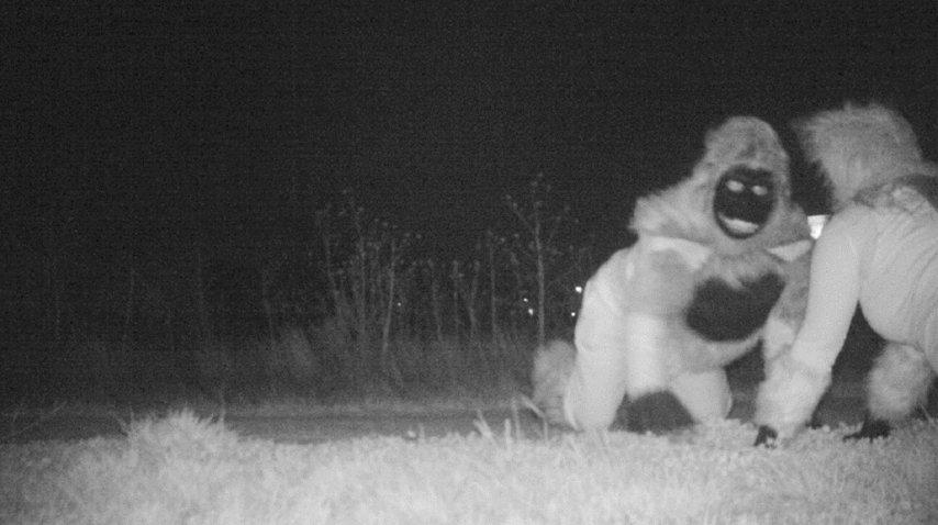 <p>Chiste en un parque de Kansas</p><p></p>