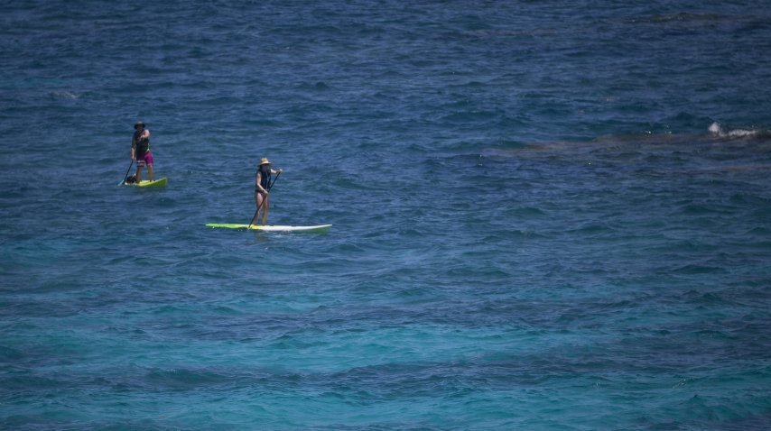 Visitantes hacen paddle board en el parque Church Bay<br>