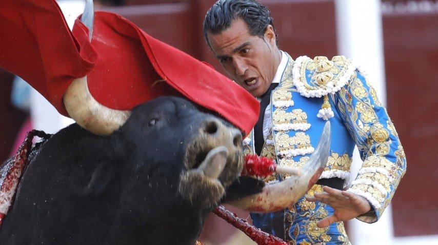 El matador Iván Fandiño murió este sábado en Francia<br>
