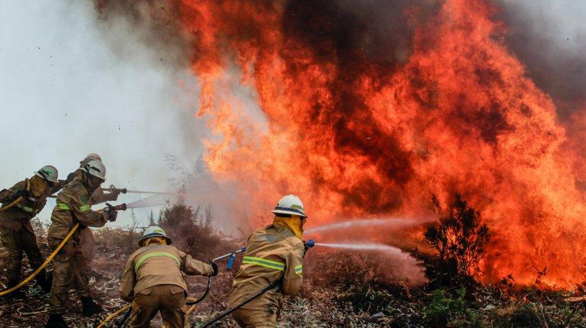 Voraz incendio en Portugal