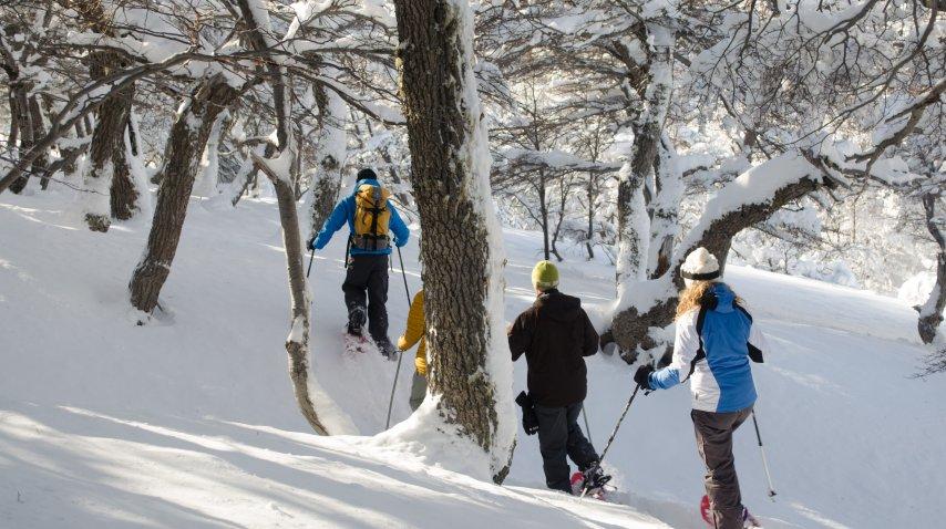 Hay tiempo para toda clase de actividades en la nieve<br>