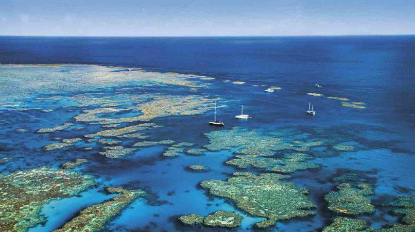 Todavía se reciben visitas en la Gran Barrera de Queensland<br>