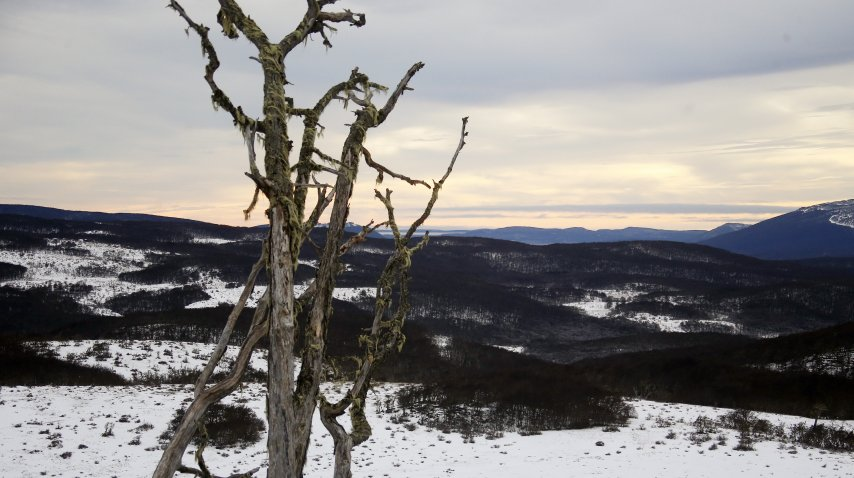 Los paisajes de Karukinka
