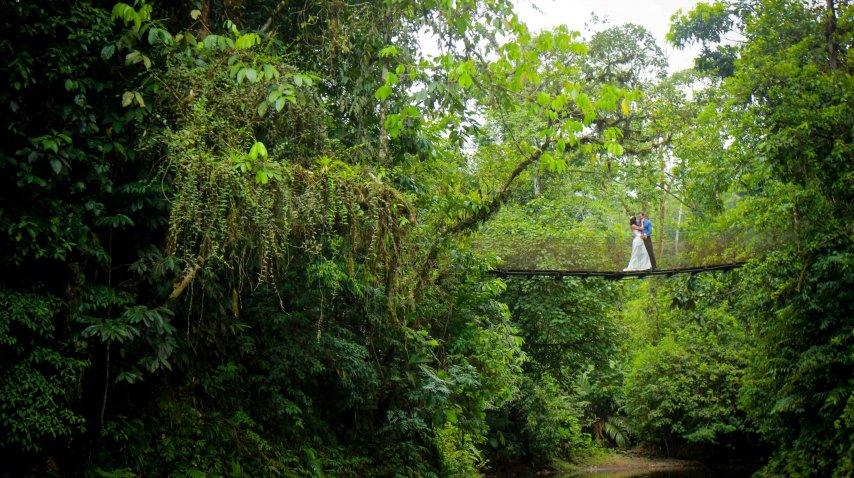 Toda la exuberancia de la selva para adornar un día perfecto<br>